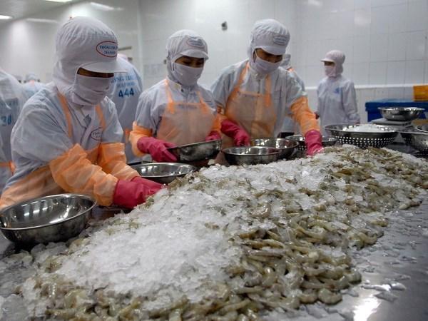 Les crevettes vietnamiennes sont prisees aux Etats-Unis hinh anh 1