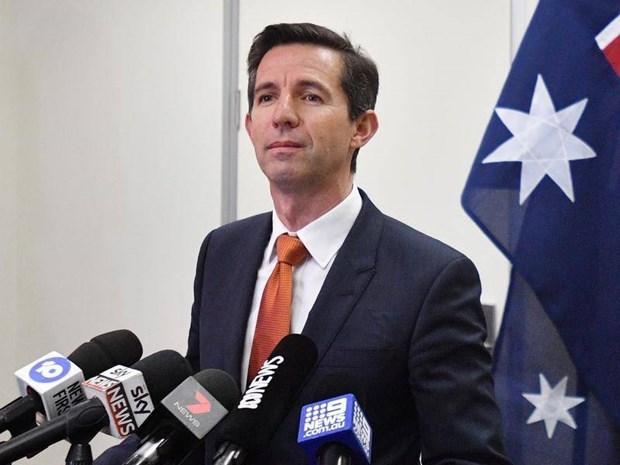 L'Australie appelle les entreprises a saisir les opportunites d'investissement de l'ASEAN hinh anh 1