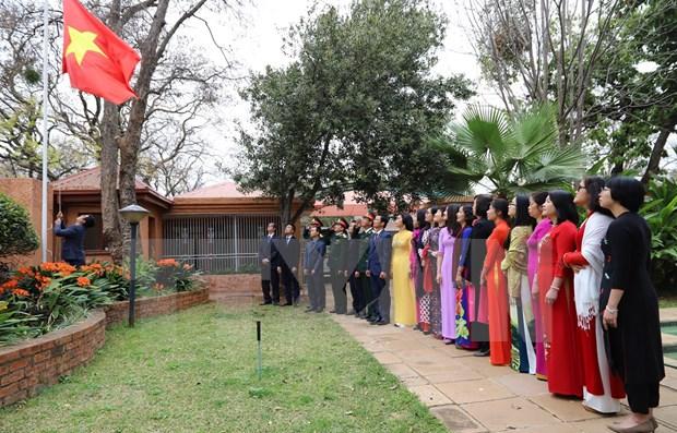 La Fete nationale du Vietnam celebree en Afrique du Sud et en Egypte hinh anh 1