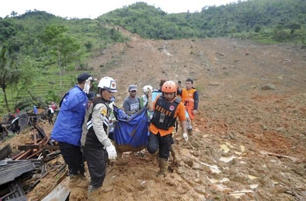 Les glissements de terrain font 10 morts dans la province indonesienne de Kalimantan du Nord hinh anh 1