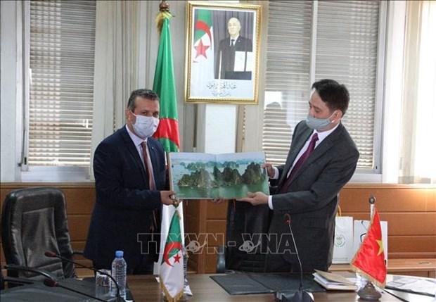 L'Etablissement public de Television d'Algerie souhaite cooperer avec la Television du Vietnam hinh anh 1