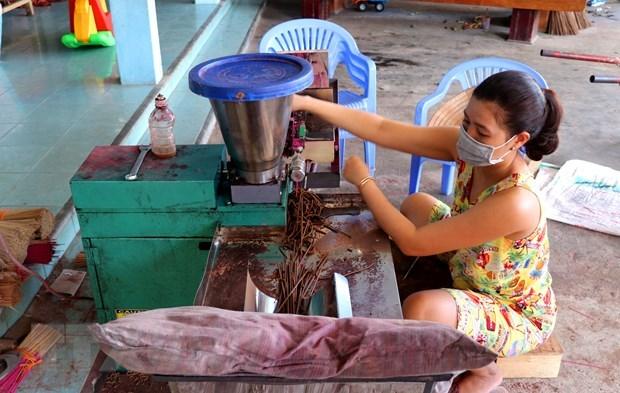 Le metier de production de batonnets d'encens au village de Thuy Xuan hinh anh 2