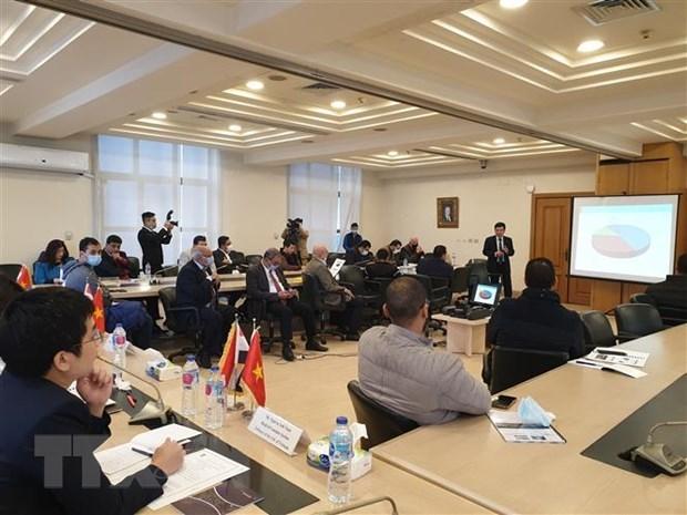 Renforcement de la cooperation economique entre le Vietnam et l'Egypte hinh anh 1