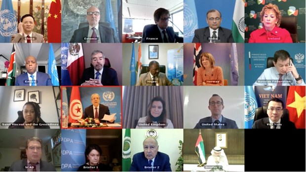 Le Conseil de securite examine sa cooperation avec la Ligue des Etats arabes hinh anh 1
