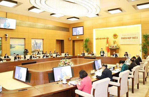 Le pays compte 184 circonscriptions electorales pour les prochaines elections hinh anh 1