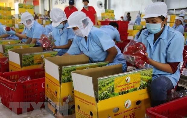 Les autorites de la Colombie-Britannique apprecient le dynamisme de l'economie vietnamienne hinh anh 1