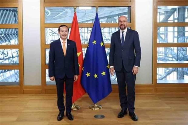 La Belgique et l'UE sont pretes a renforcer les relations avec le Vietnam hinh anh 1