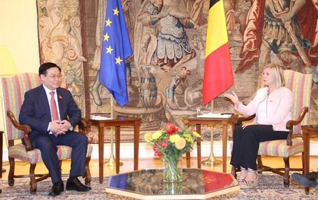 Entretien entre president de l'AN et presidente de la Chambre des Representants de Belgique hinh anh 1