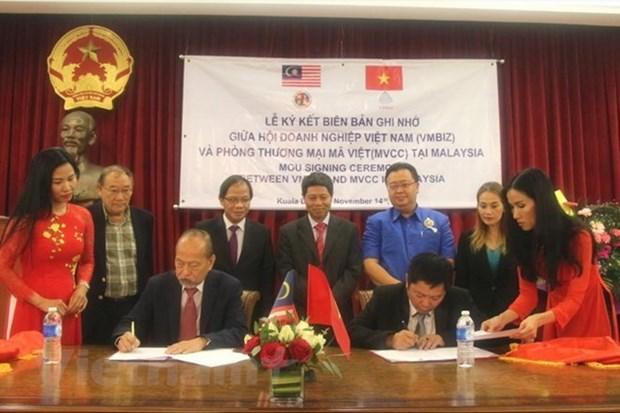 Vietnam-Malaisie : nouvel elan pour la cooperation entre entreprises hinh anh 1