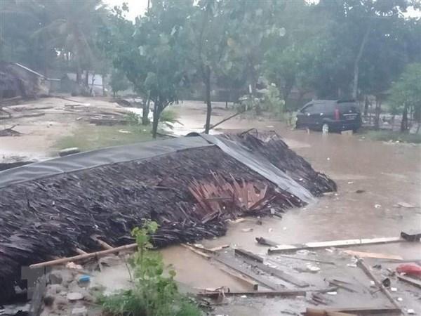 Tsunami : les dirigeants vietnamiens adressent des condoleances a l'Indonesie hinh anh 1