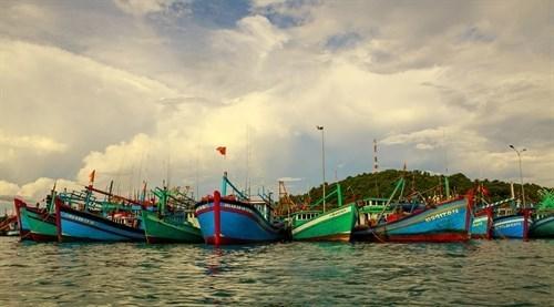Ba Ria-Vung Tau durcit le ton contre la peche INN hinh anh 1