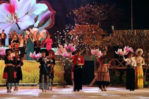 La fete des fleurs de bauhinie en mars a Dien Bien hinh anh 1