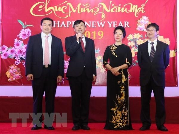 Des Viet kieu aux Etats-Unis et en France accueillent le Tet traditionnel hinh anh 1