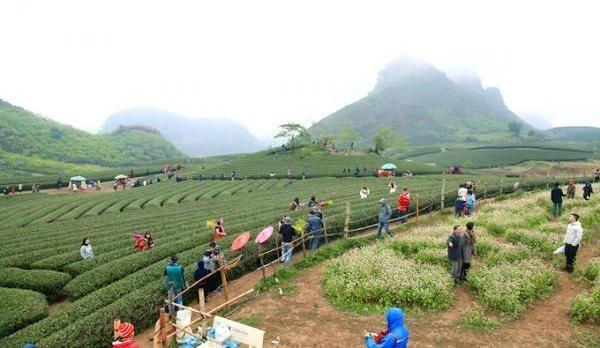 Approbation de l'amenagement global du futur site touristique national de Moc Chau-Trang hinh anh 1