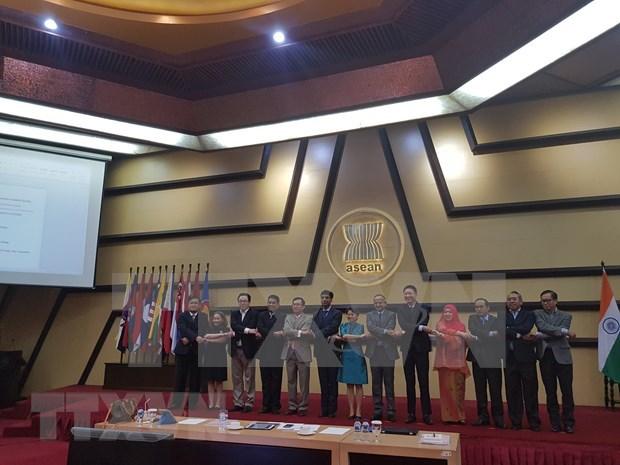 La cooperation ASEAN-Inde atteint de bons resultats hinh anh 1