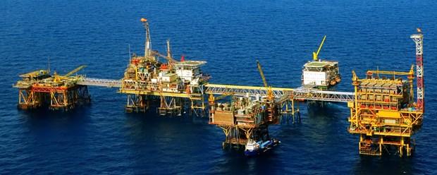 Vietsovpetro salue le premier flux de petrole du gisement de Ca Tam hinh anh 1