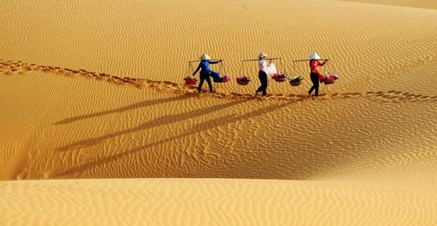Pour un developpement durable du tourisme a Binh Thuan hinh anh 1
