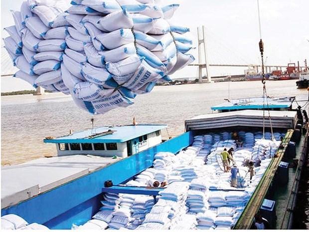 Can Tho : les exportations de marchandises en hausse de pres de 12% hinh anh 1