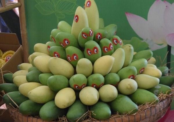 Exportation de mangues fraiches aux Etats-Unis hinh anh 1