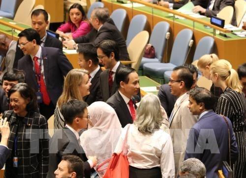 Les medias indiens attendent que le Vietnam contribue au remaniement de la dynamique de l'ONU hinh anh 1