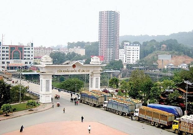Exportations de produits agricoles via la porte frontaliere internationale de Lao Cai en hausse hinh anh 1