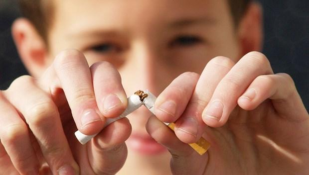 La SEATCA salue l'interdiction de la publicite des cigarettes en ligne de l'Indonesie hinh anh 1