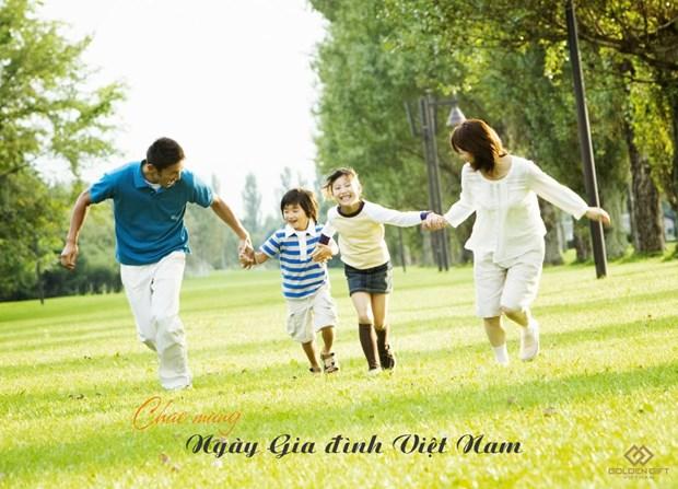 La Journee de la famille vietnamienne sera fetee du 28 au 30 juin hinh anh 1