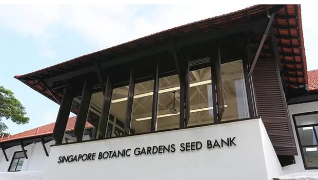 Singapour cree sa premiere banque de graines hinh anh 1