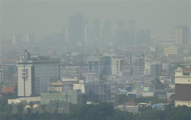 ASEAN : de nombreux risques d'incendies de forets hinh anh 1