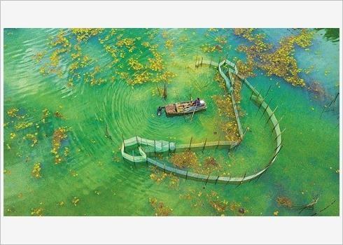 Ninh Binh accueillera l'Annee nationale du tourisme 2020 hinh anh 1