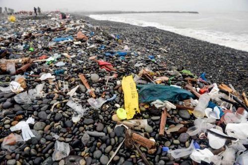 L'Alliance pour mettre fin aux dechets plastiques se concentre sur l'Asie du Sud-Est hinh anh 1