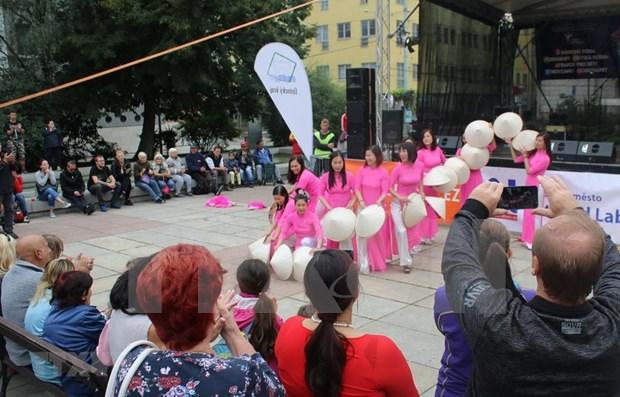 Le Vietnam a une fete culturelle en Republique tcheque hinh anh 1