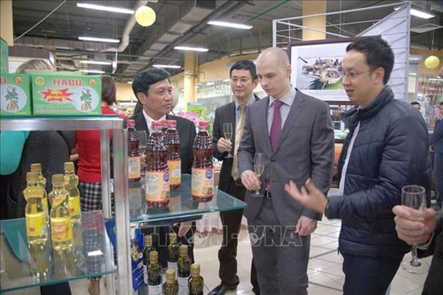 La province vietnamienne de Thanh Hoa promeut sa cooperation avec des localites russes hinh anh 1