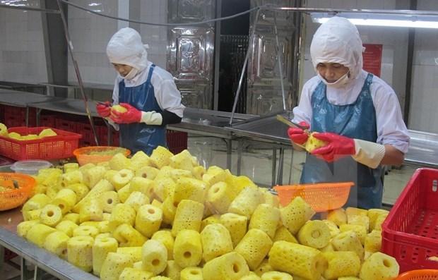 Promouvoir les exportations de produits agricoles et aquatiques vers la Chine hinh anh 3