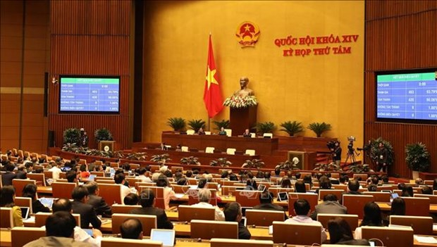 L'Assemblee nationale adopte le Code du travail (amende) hinh anh 1