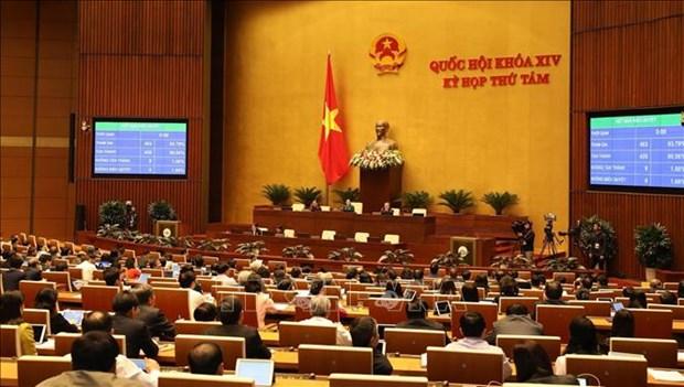 L'OIT apprecie l'adoption du Code du travail (amende) du Vietnam hinh anh 1