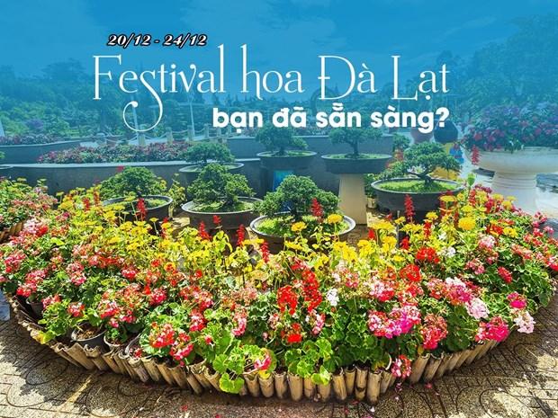 Le Festival des fleurs de Da Lat 2019 aura lieu du 20 au 24 decembre hinh anh 1