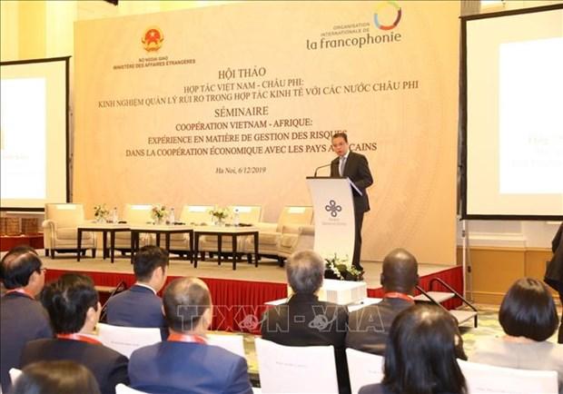 Ameliorer l'efficacite de cooperation economique entre le Vietnam et les pays africains hinh anh 1