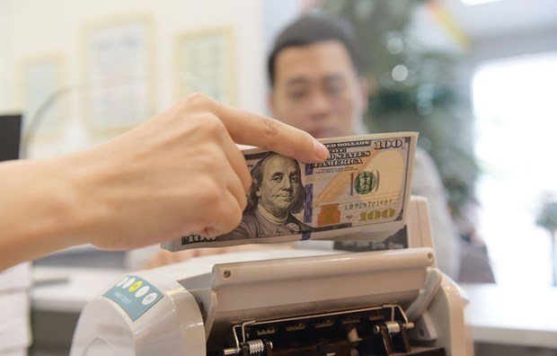 Les devises transferees a Ho Chi Minh-Ville seraient en croissance de 9% cette annee hinh anh 1
