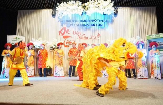 La communaute des Vietnamiens en Republique tcheque fetent le Nouvel An 2020 hinh anh 1