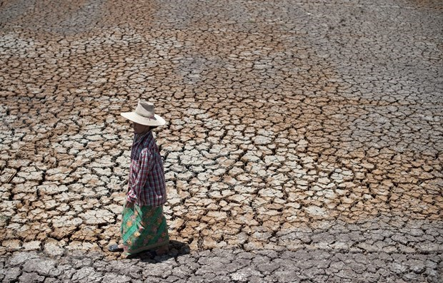 La Thailande doit se preparer a une grave secheresse hinh anh 1