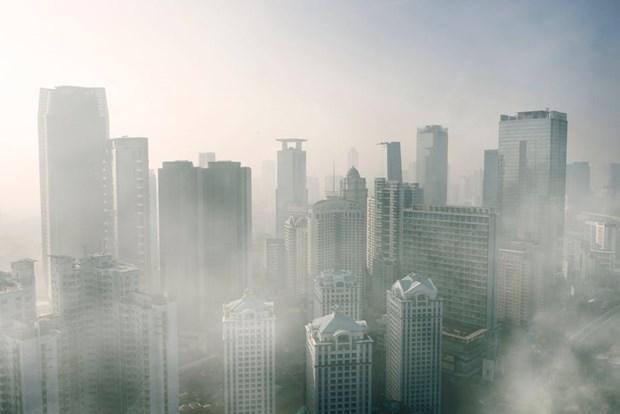 Indonesie : plus de 232.900 personnes mortes dues a la pollution hinh anh 1