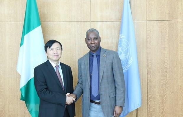 L'ambassadeur vietnamien Dang Dinh Quy discute de l'amelioration des operations de l'ONU hinh anh 1