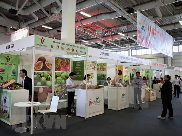 Des entreprises vietnamiennes au Fruit Logistica 2020 a Berlin hinh anh 1