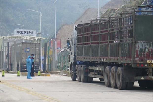 COVID-19 : la porte frontaliere de Tan Thanh reprend offiellement ses operations de dedouanement hinh anh 1