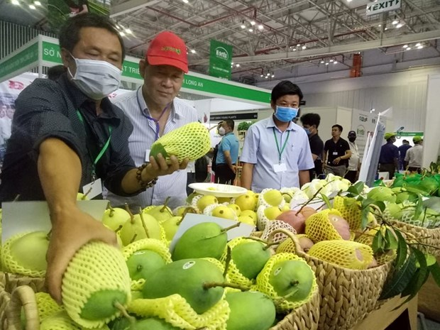 Diversification des marches a l'export des fruits et legumes hinh anh 1