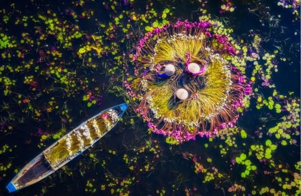 Smithsonian Magazine Photo Contest : Cinq photos sur le Vietnam qualifies pour la finale hinh anh 3