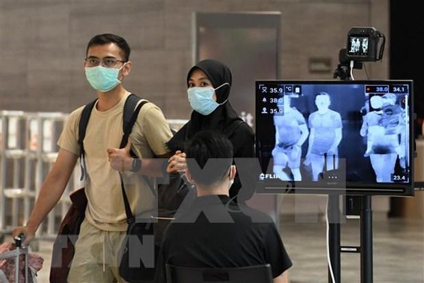 COVID-19 : Singapour dans l'incapacite d'organiser les elections generales hinh anh 1