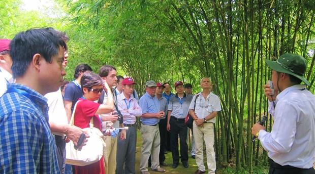 Coronavirus : Quang Tri et Vinh Phuc renforcent les mesures preventives hinh anh 1