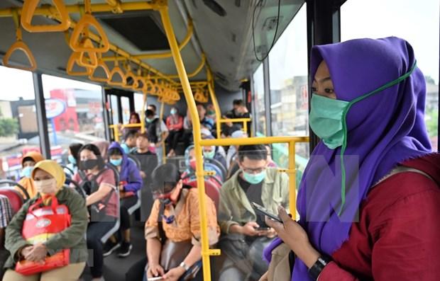 COVID-19 : la situation de l'epidemie dans certains pays d'Asie du Sud-Est. hinh anh 1